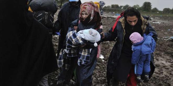 Refugiados sirios atorados en Serbia a la espera de entrar a Croacia. Foto ACNUR: Mark Henley