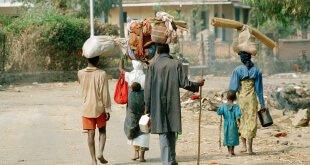 Refugiados de Rwanda, que huyeron del genocidio, regresan a su país en julio de 1994 desde Zaire (la actual República Democrática del Congo). Foto: ONU/John Isaac