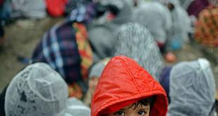 Un niño espera, junto a un grupo de refugiados afganos, autorización para cruzar la frontera con Serbia desde Tabanovce, en la Antigua República Yugoslava Macedonia. Foto: UNICEF/UN010676/Georgiev