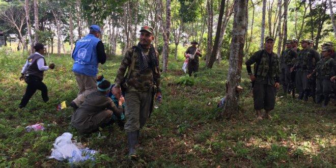 Imagen de la llegada de los últimos miembros de las FARC-EP a las zonas veredales. Foto: Misión de la ONU en Colombia