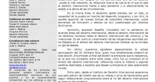 CARI - Boletín informativo del Instituto de Derecho Internacional - Nº 28. Abril 2020