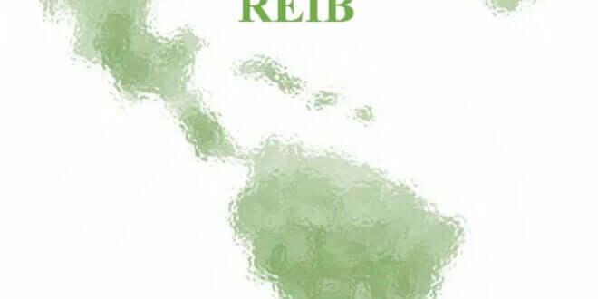 Revista Electrónica Iberoamericana - Vol. 14, No. 2, 2020